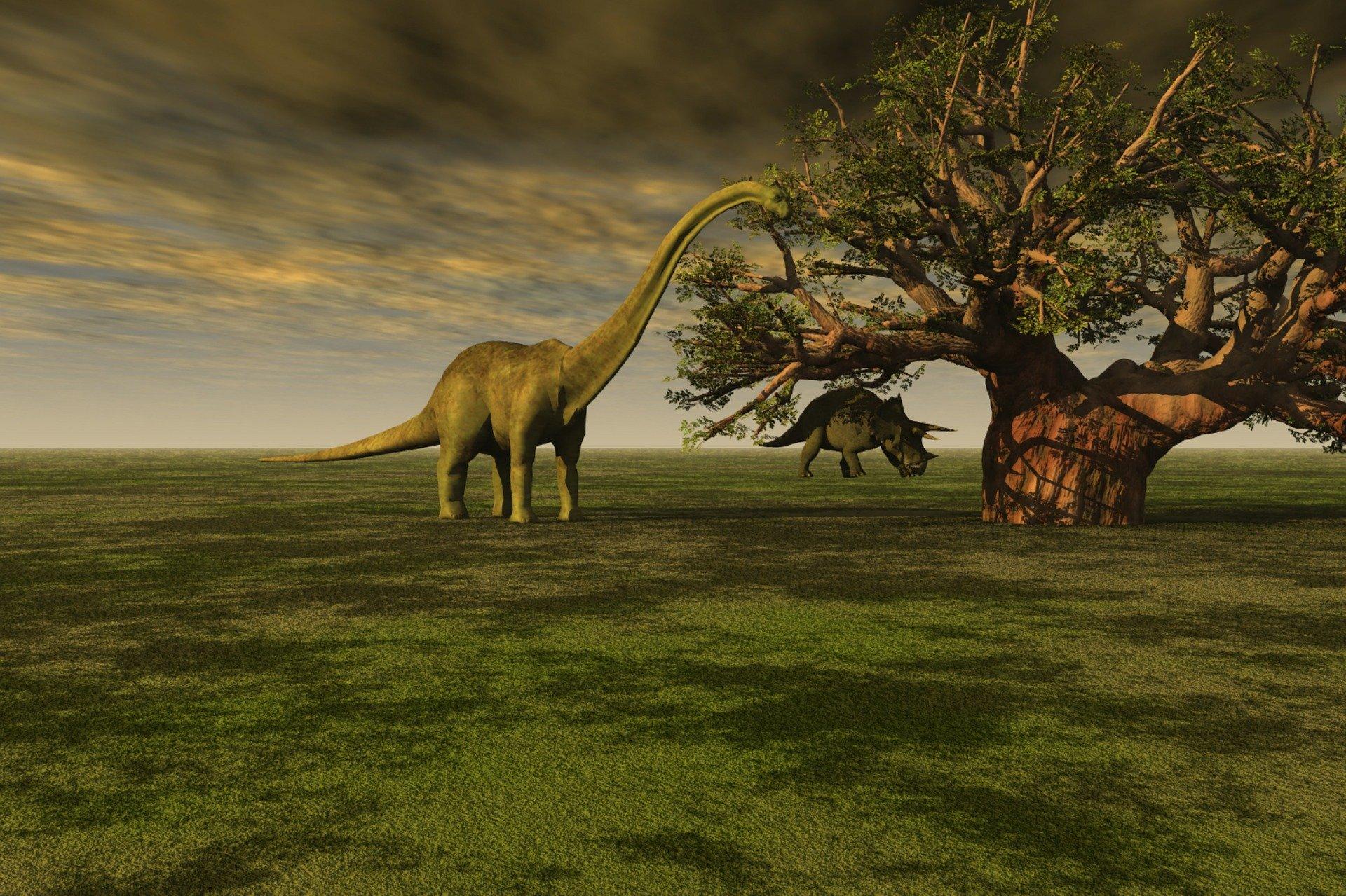 prehistoric-68074_1920